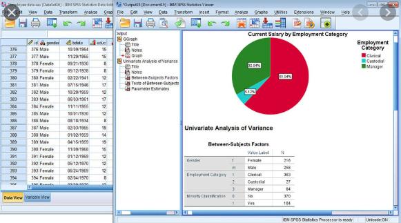 IBM SPSS Statistics v26 2019