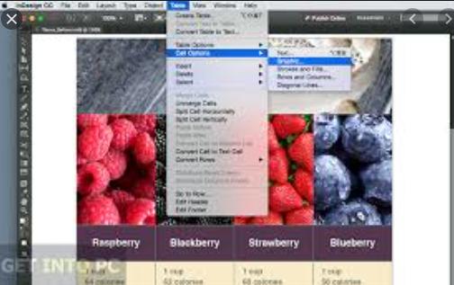Adobe InDesign CC 2015 Portable x86 x64