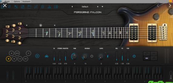 Ample Guitar PF