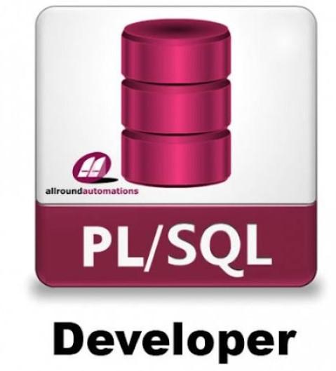 Allround Automations PL SQL Developer 12